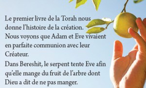 LBC Reality Booklet - French - Textbox3
