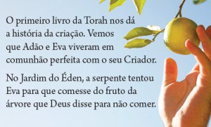 LBC Reality Booklet - Portuguese - Textbox3